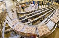 Praca w Anglii sezonowa przy pakowaniu mrożonek na produkcji w Kenilworth