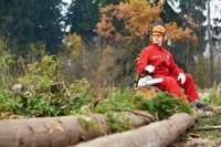 Drwal z doświadczeniem – praca we Francji w lesie oferta sezonowa